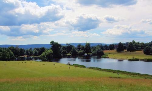 Petworth Park Image