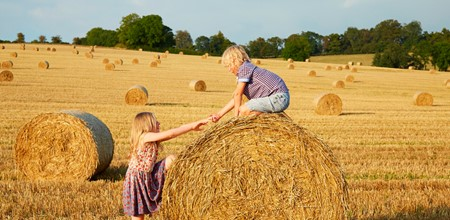 Children on hay